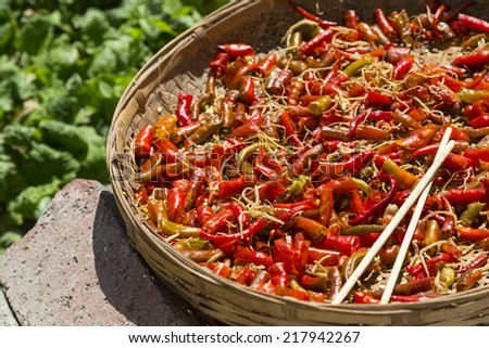 Chopped chilies laid out to dry in the sun, Dali, Yunnan - stock photo