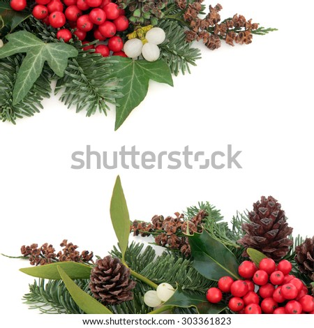 Christmas and winter background border with holly, mistletoe ivy, spruce fir, pine cones and cedar cypress over white background. - stock photo