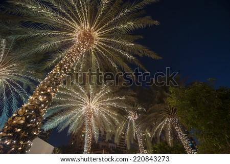 christmas background palm tree  - stock photo