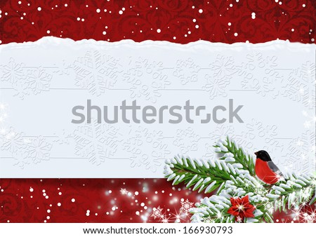 Christmas background with bullfinches.Copy space available.  - stock photo