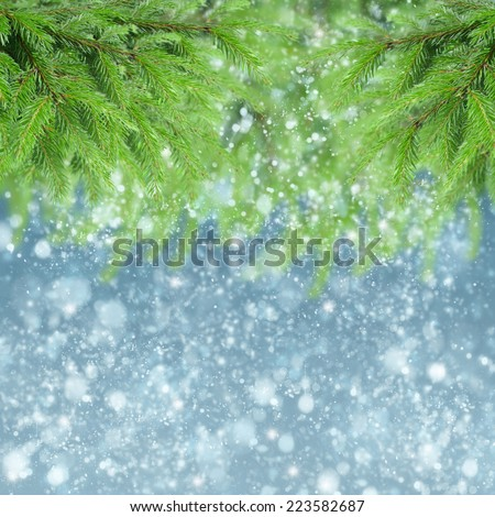 christmas background with fir tree and falling snow - stock photo