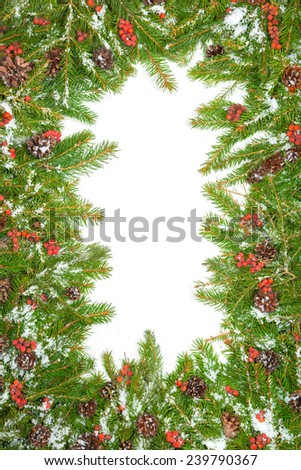 Christmas background with snow, cones and holly berry isolated on white - stock photo
