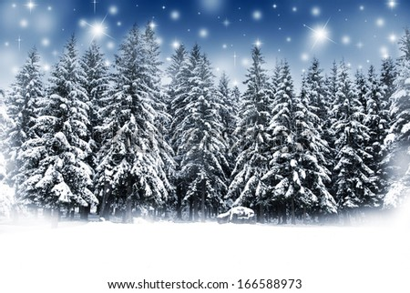 Christmas background with snowy fir trees and shining stars - stock photo