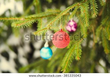 Christmas ball on green fir-tree branch outdoor - stock photo