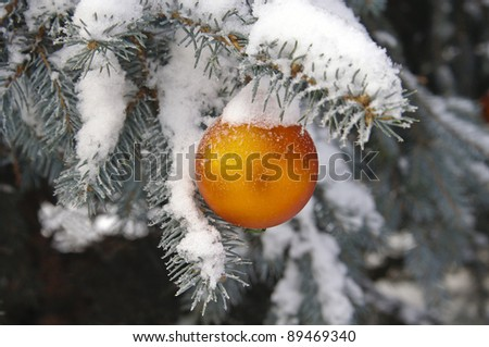 Christmas ball on the christmas tree - stock photo
