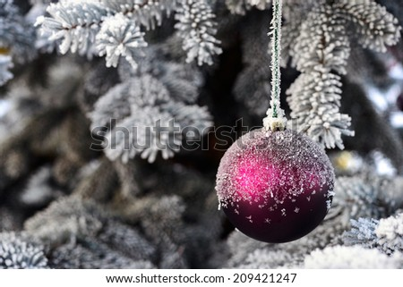 Christmas bauble hanging on an icy fir - stock photo