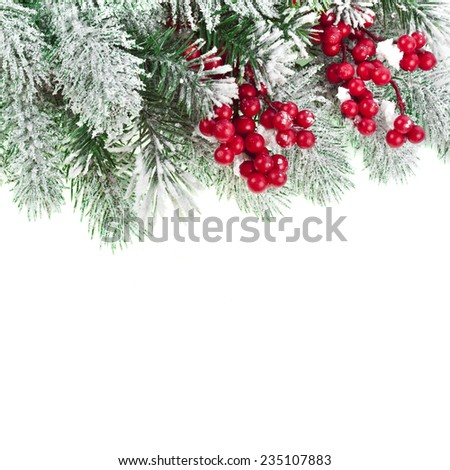 Christmas border frame with snow tree and red berries isolated on white background - stock photo