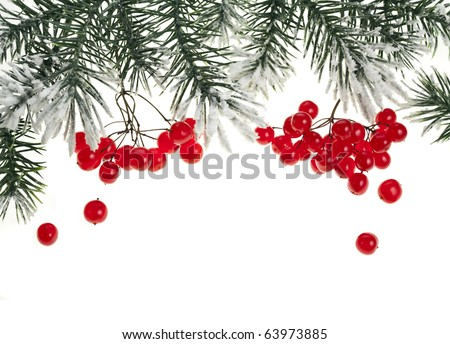 Christmas branch with red berries on white - stock photo