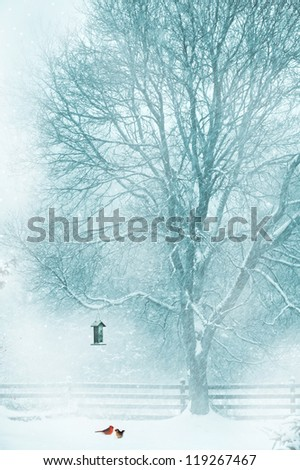 Christmas card design with softly toned background featuring a male and female cardinal under the bird feeder in the snow. - stock photo