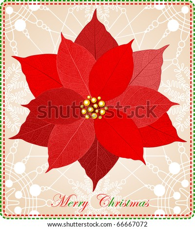 Christmas card with beautiful red poinsettia. Ready to print raster image - stock photo