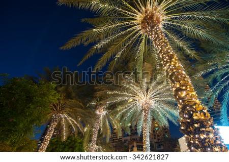 christmas decoration background palm tree. - stock photo