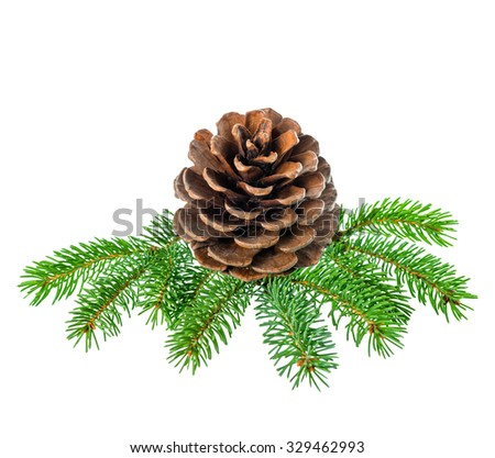 Christmas decoration of fir tree branch with cedar cone is isolated on white background, closeup   - stock photo