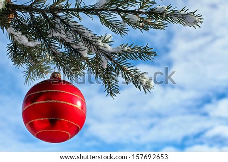 Christmas decoration red glass ball on fir branches outdoor - stock photo