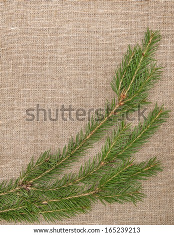 Christmas decoration with fir branch on burlap - stock photo