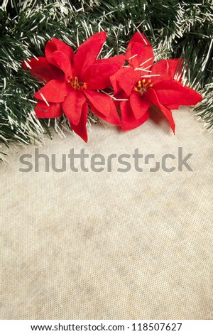 Christmas decoration with poinsettia, seasonal background for greeting cards with copy space - stock photo