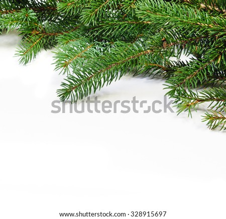 christmas evergreen pine tree branches over white - stock photo