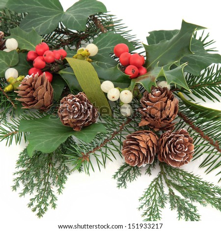 Christmas flora with holly, ivy, mistletoe, pine cones and winter greenery over white background. - stock photo