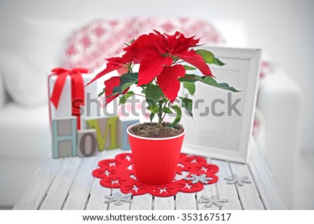Christmas flower poinsettia and decorations on table with Christmas decorations, on light background - stock photo