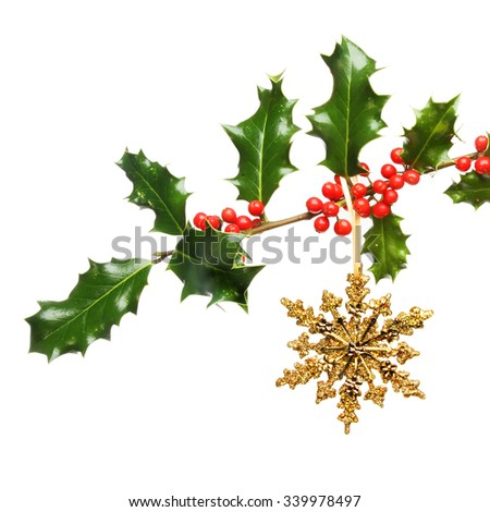 Christmas gold glitter  star decoration hanging from a holly bough isolated against white - stock photo