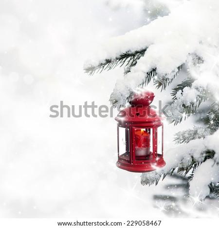 Christmas lantern hanging on pine - stock photo