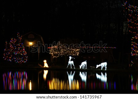 Christmas lights are reflected in the pond - stock photo