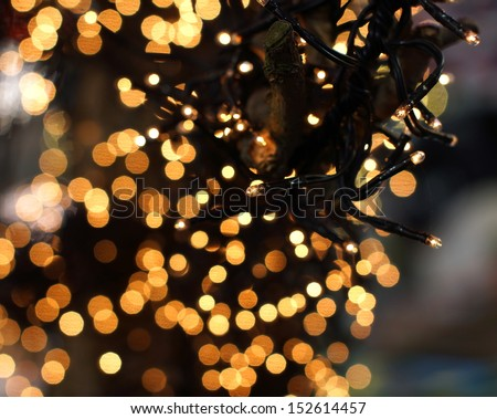 christmas lights hanging in a tree creating a wonderful bokeh of lights  - stock photo