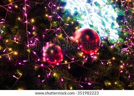 Christmas lights hanging in a tree on chrismas day - stock photo