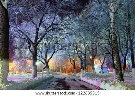 Christmas magic park, forest with lanterns, magic forest - stock photo