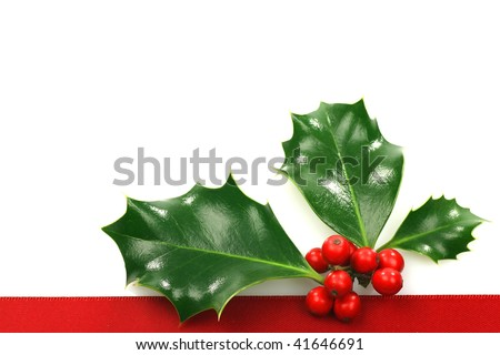 christmas ornament border with holly, berries and room for text on a white background - stock photo