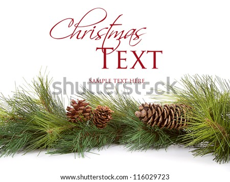 Christmas pine branches and pine cones on white background - stock photo