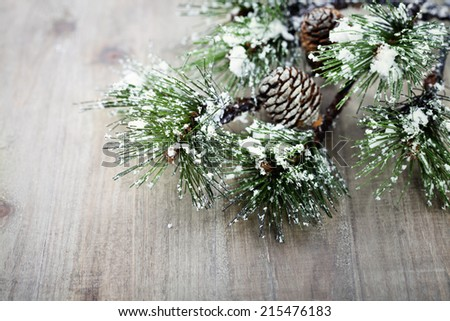 Christmas pine tree branch on wooden background - stock photo