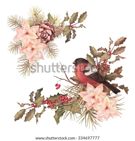 Christmas retro watercolor decorative corner composition. Bird bullfinch, poinsettia flowers with Rowan and Holly branch on a white background - stock photo
