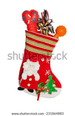 Christmas Santa stocking full of gifts for dog - stock photo
