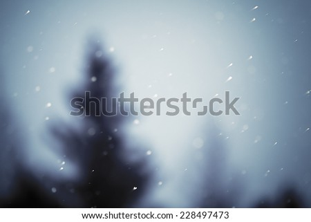 christmas snowfall and blurred christmas tree on background in the evening, natural photography - stock photo