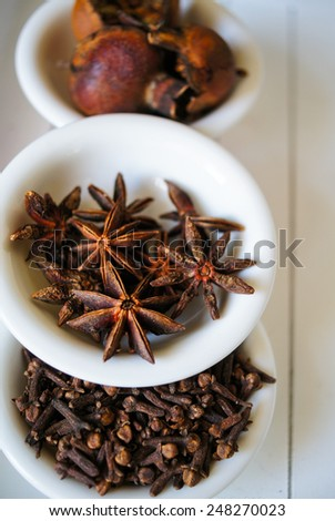 Christmas time spices, like a cinnamon sticks, anise stars and cloves - stock photo