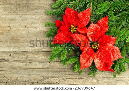 christmas tree branch with red poinsettia flower on wooden background. vintage style toned picture - stock photo