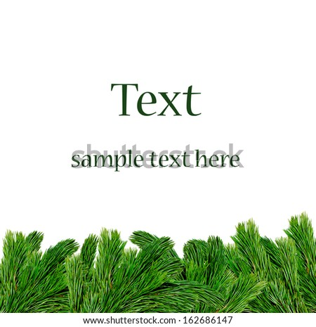 Christmas tree branches border over white background (with sample text)  - stock photo