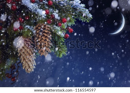 Christmas tree covered with snow on the blue night sky - stock photo