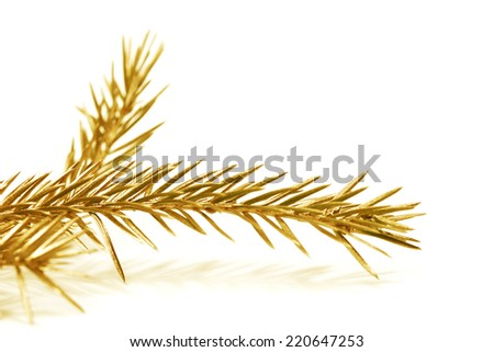 Christmas tree golden branch isolated on white background - stock photo