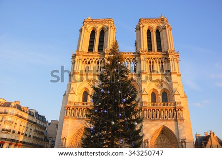 Christmas tree in front of the Notre Dame cathedral in golden sunset light. Paris, France. - stock photo