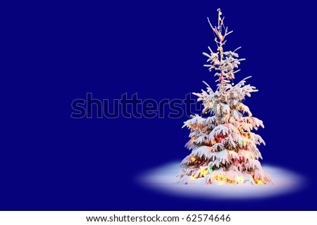 Christmas tree in snow with colored lights and blue background - stock photo