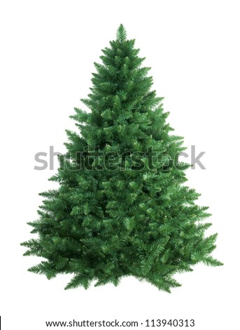 christmas tree isolated - stock photo