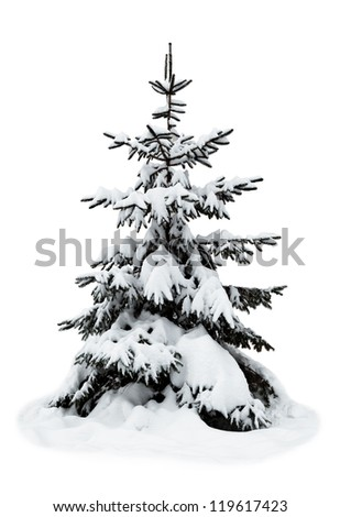 christmas tree on a white background - stock photo