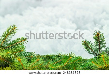 Christmas tree on abstract background - stock photo