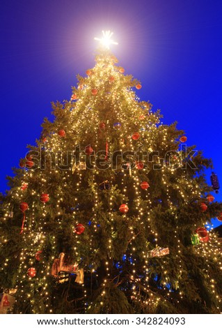 Christmas tree outdoor at blue sky - stock photo