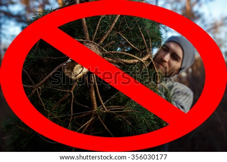 Christmas tree trunk. deforestation . man carries home a Christmas tree out of the forest.  cutting down trees is prohibited! - stock photo