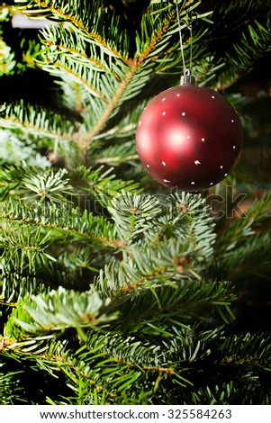 Christmas tree with red bauble, traditional decoration closeup background copy space.  - stock photo