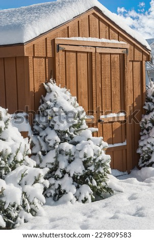 Christmas Trees for Sale Covered in New Snow - stock photo