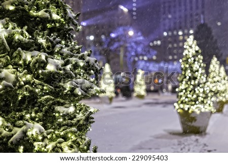 christmas trees in the snow - stock photo