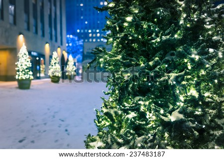 christmas trees in the snow in NYC - stock photo